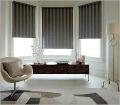 Blackout Blinds from Shades